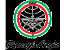 RECCAGNI ANGELO (Италія)